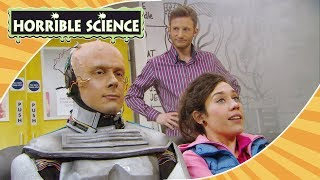 Horrible Science - Happy Christmas! | Science for Kids | #Christmas