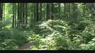 The BLAIR WITCH PROJECT film locations