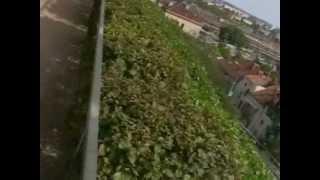 Город Брно Чехия обзор(Поразительный город, хотя и считается, что там промышленный анклав и трубы смотрят в небо, но это не так...., 2013-02-03T13:21:29.000Z)