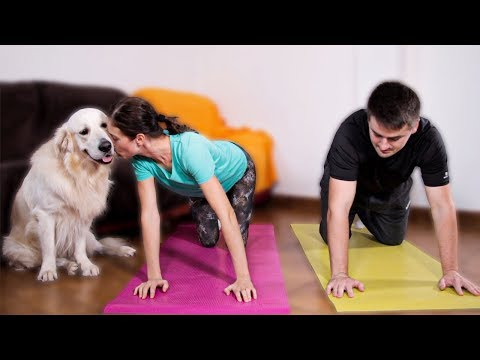 Dog Demands Attention and Won't Let Dad and Mom Workout!