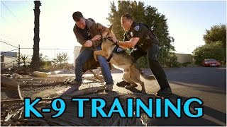 K9 Training  Behind the Badge  OC