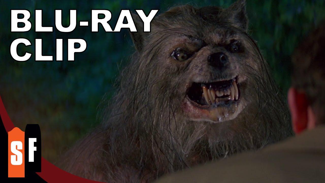 Nice werewolf - photo#36