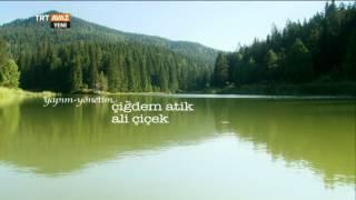 Sinop'ta Yazın Getirdiği Güzellikler - Dört Mevsim - TRT Avaz