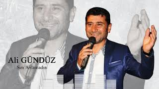 Ali Gunduz - Sen Anlamadin Resimi
