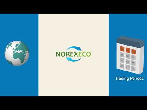 What is NOREXECO, the pulp and paper exchange?