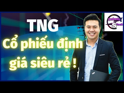 TNG - Cổ phiếu định giá siêu rẻ đến lạ !