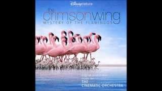 The Cinematic Orchestra - Transformation