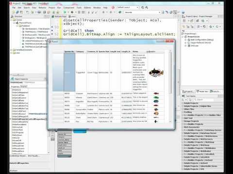 Remote Software Developer Jobs in January - Delphi