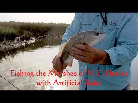 Fishing The Marshes Of NE Florida With Artificial Baits
