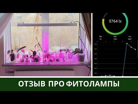 Новые Фитолампы 🌷 Что делать если сломался Цветонос Орхидеи
