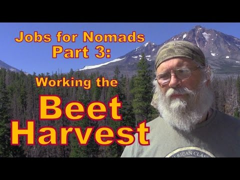 Jobs for Nomads Part 3: Working the Beet Harvest.