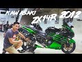 Project Bike: Kawasaki ZX14R Mr. L
