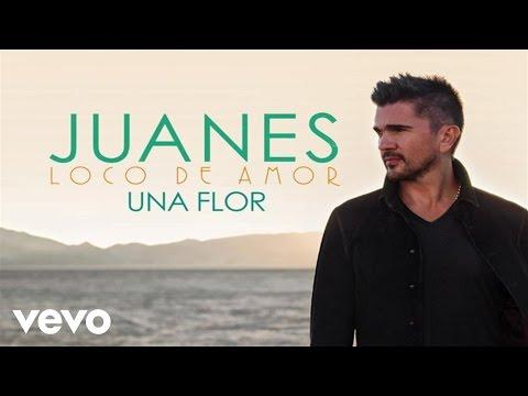 Juanes - Una Flor (Audio)