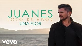 Watch Juanes Una Flor video