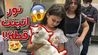 نور قررت تتبنى أصغر قطة بالعالم😱 شنو القصة؟