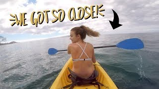 Kayaking with HUGE whales in Hawaii!! (Days 3+4) | Summer Mckeen Vlogs