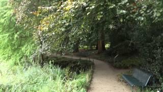 Babbling brook, bells, and birds at the Münster Botanical Garden
