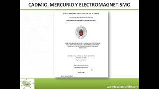 BACTERIAS Y SALUD: INTOXICACIÓN POR CADMIO II (Actualización)