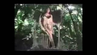 Sex Gorilla 2008