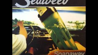 Watch Seaweed Free Drug Zone video
