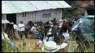 Manu Chao - Mama cuchara Ecuador - Volatil