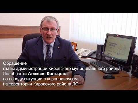 о ситуации с коронавирусом в Кировском районе ЛО