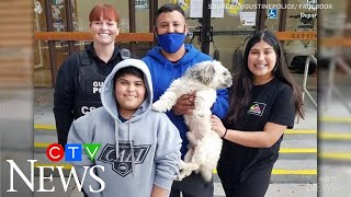 Family reunited with dog missing since January