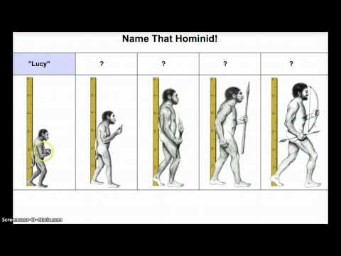 Early Hominids: Capabilities