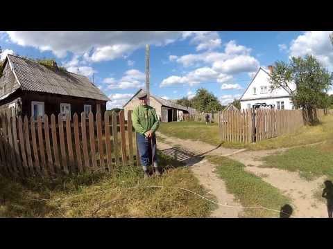 Puszcza Białowieska | Wycieczka na granicę polsko-białoruską