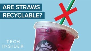 Why Plastic Straws Suck