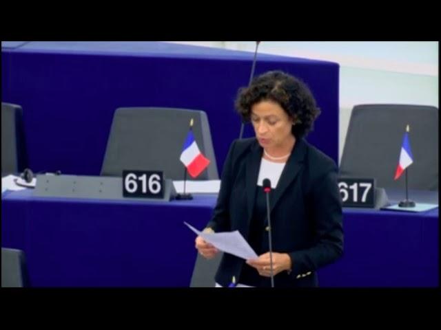 Christelle Lechevalier sur la situation en Hongrie