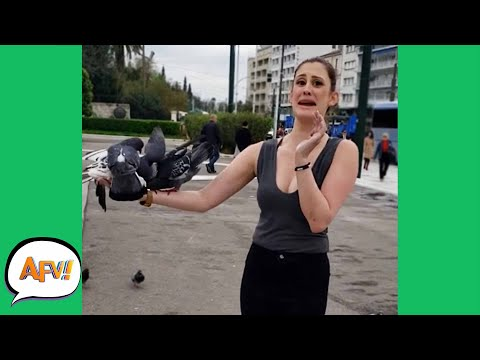 She's Made A HUGE MISTAKE! 😂 | Funny Videos | AFV 2020