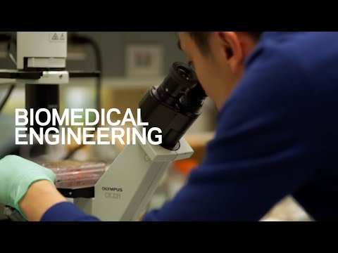 Biomedical Engineering at Columbia