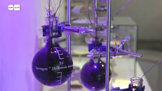 Faber Futures: The Rhizosphere Pigment Lab as part of GROW YOUR OWN... at Science Gallery