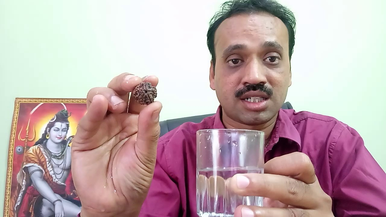 identify Real Rudraksha how to check original Water Test of Rudraksha  Authenticity Water Test
