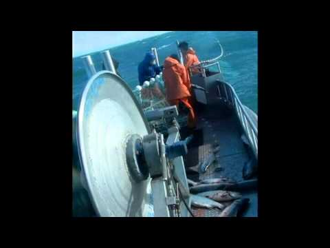 Commercial fishing in Cook Inlet Alaska