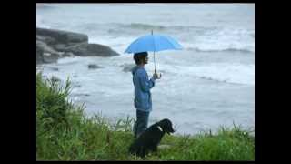 1 Minute in the rain ♥ Relax Amazing Sound , Pictures HD