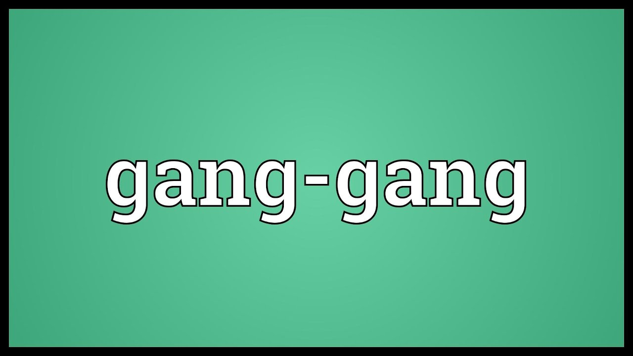 Gang Gang Meaning Youtube
