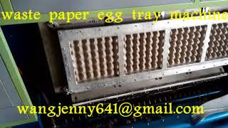 large amount paper forming egg tray machines suppliers