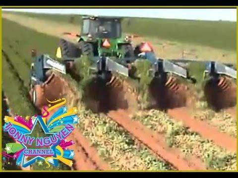 ✲ Máy thu hoạch đậu phộng (lạc) công nghệ hiện đại 。◕‿◕。 Peanut Harvest Machine ღ☼