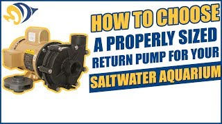 How to Choose a Properly Sized Return Pump for Your Saltwater Aquarium