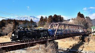【C11 207】東武鉄道SL大樹の旅【14系客車】あっぱれ日光!SL大樹珍道中ーEDO WONDER TRAIN-