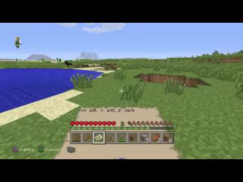 Minecraft (Survival mode)