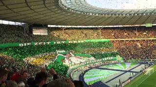 DFB  Pokalfinale 2015 VFL Wolfsburg - Borussia Dortmund Choreografie - Benaglos 30.05.2015