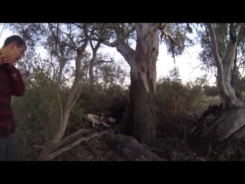Freediving & Pig Hunting SouthEast Queensland