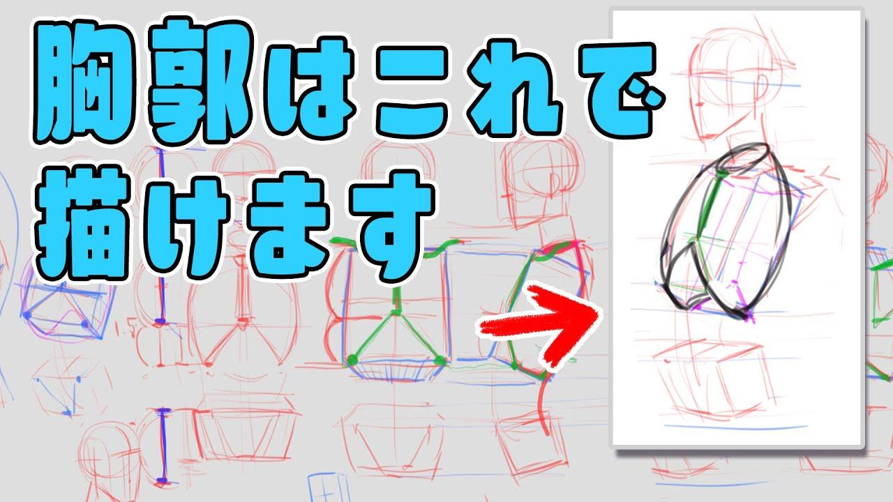 【初級コース】胸郭の描き方と単純化のススメ 朝ドロ#196 90秒ドローイング【初心者歓迎】