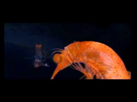 Bill and Will The Krill. (Happy Feet 2)