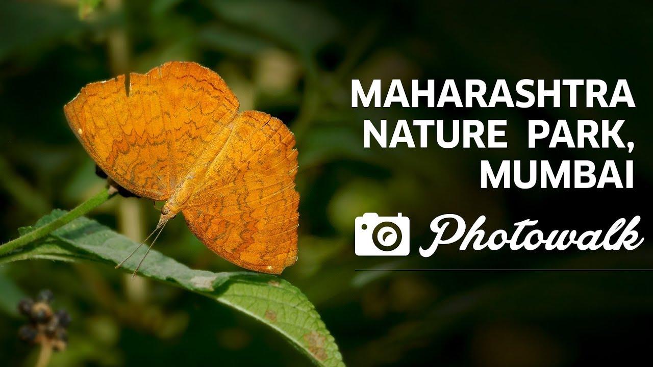 Maharashtra Nature Park Mumbai Maharashtra