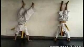 Entrenamiento de niños en Karate Godokai - Kids Training
