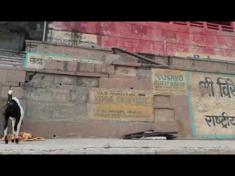Walk | Varanasi Ghats | India Travel